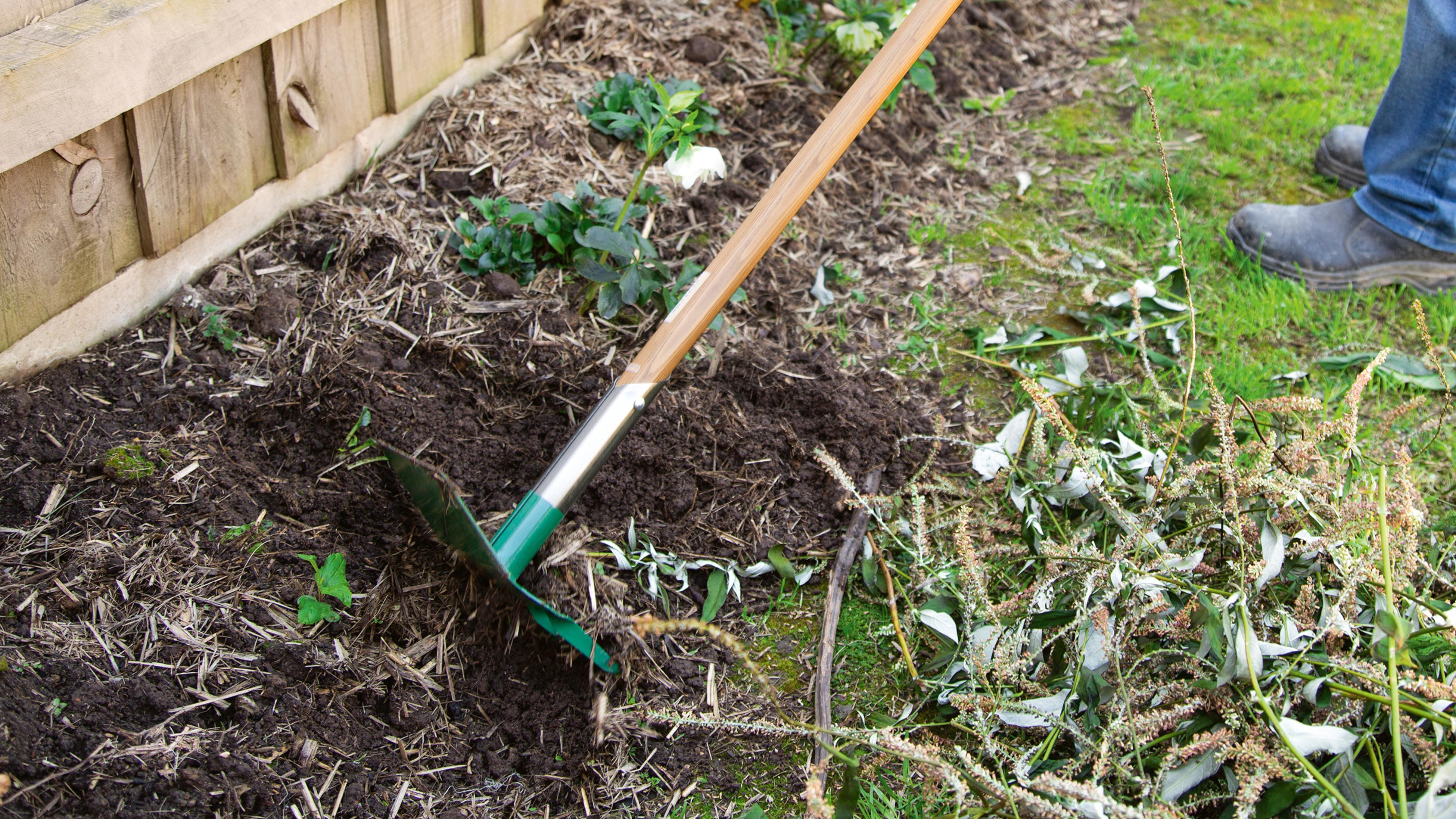 A person rakes their garden patch with a rake and hoe cultivator