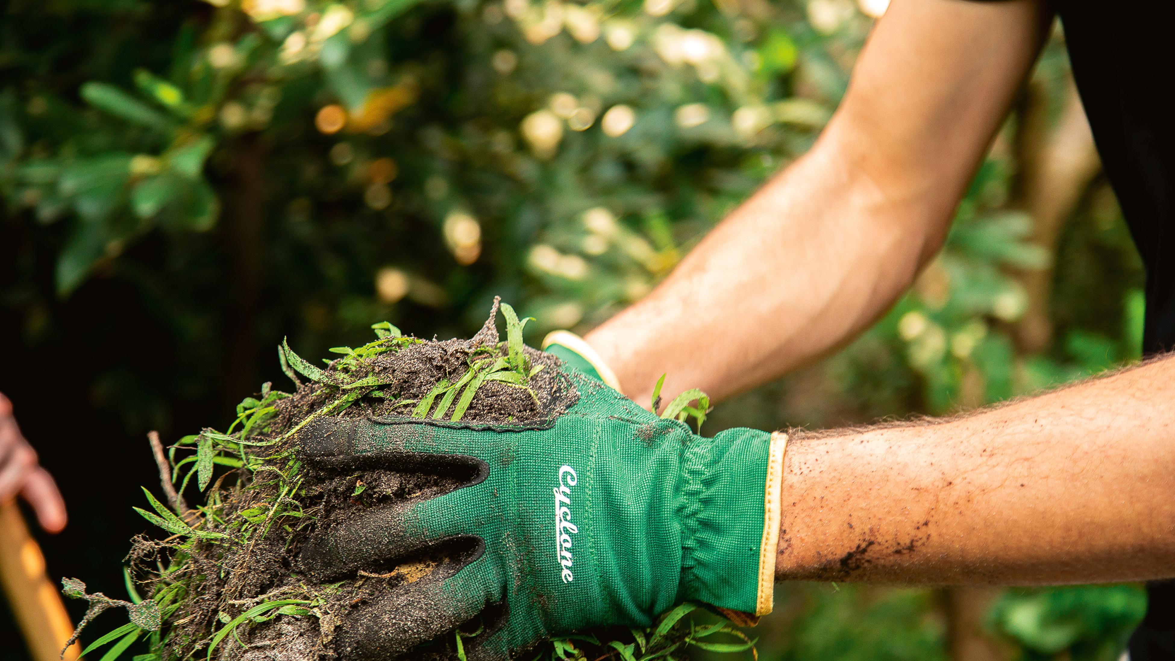 A person wears garden gloves to move garden scraps