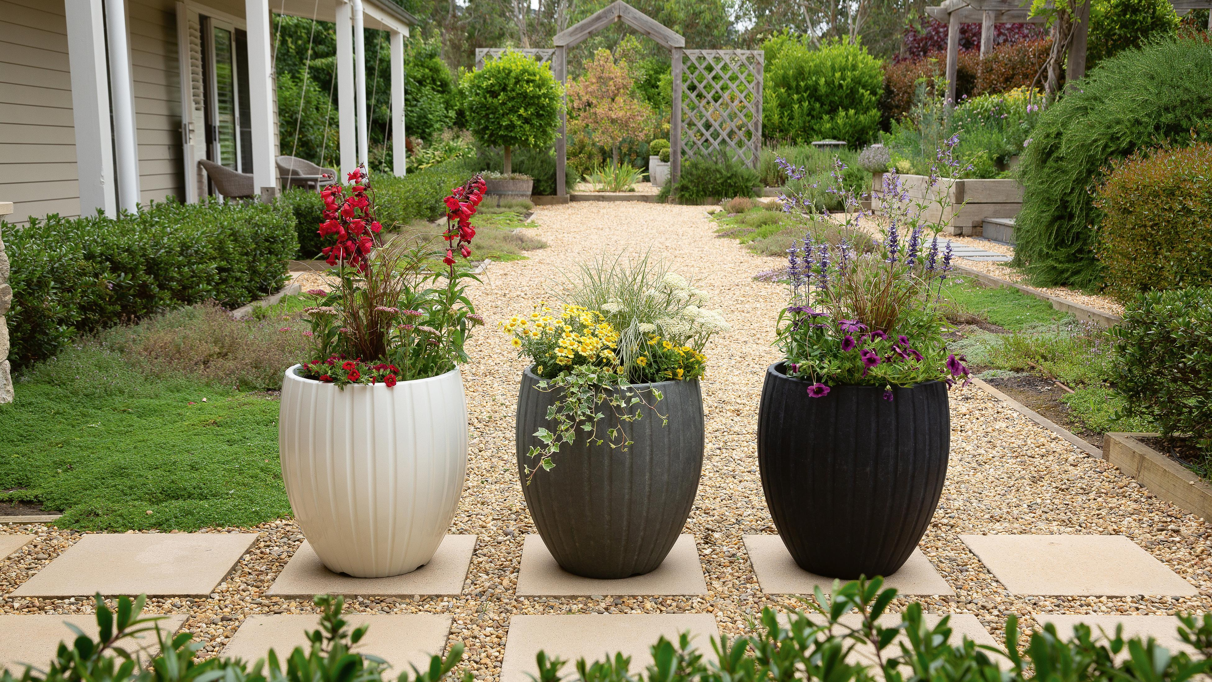 Three planters filled with colourful flowers
