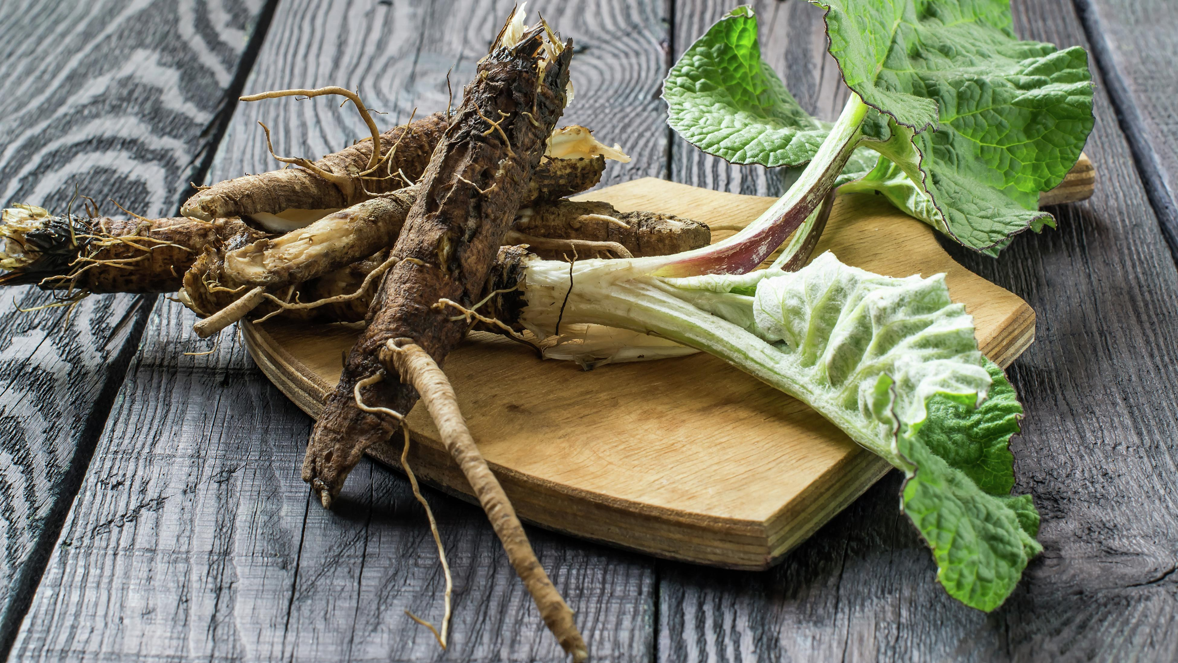 Burdock roots and leaves on a cutting board